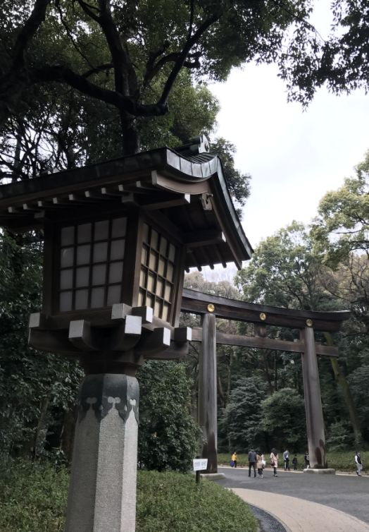 Francois Illas New Tradition: Meiji-jingu Shrine